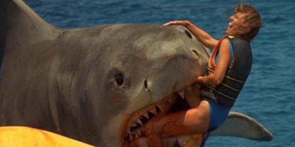 Tiburon 3 1983 latino dating 4