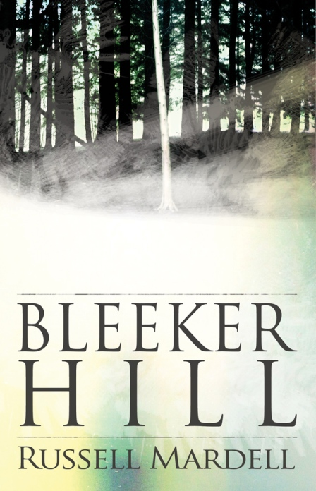 wpid-BleekerHill11
