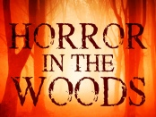 Horror in the Woods by Lee Mountford review