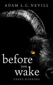 Before You Wake book cover